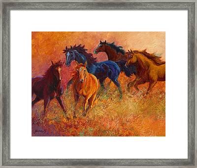 Free Range - Wild Horses Framed Print by Marion Rose
