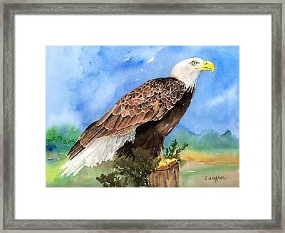 Freedom Framed Print by Arline Wagner