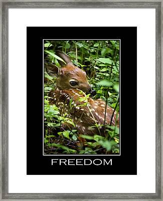 Freedom Inspirational Motivational Poster Art Framed Print by Christina Rollo