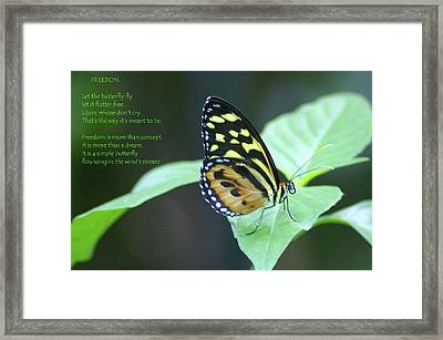 Freedom  Framed Print by Jeff Swan