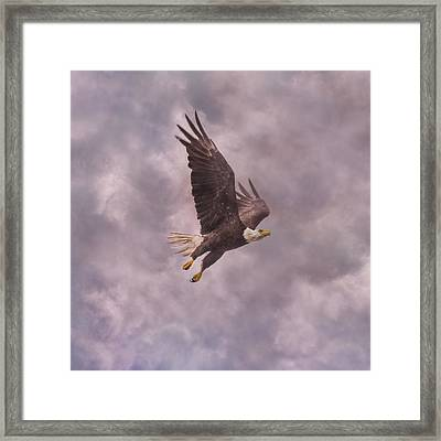 Freedom Justice Forever Framed Print by Betsy C Knapp