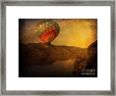 Freefallin' Framed Print by Snook R