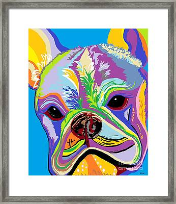French Bulldog Framed Print by Eloise Schneider