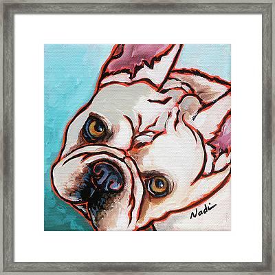 French Bulldog Framed Print by Nadi Spencer
