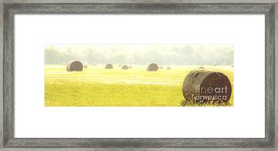 Fresh Hay In The Morning Framed Print by Tamyra Ayles