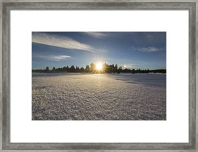Fresh Framed Print by Jeremy Jensen