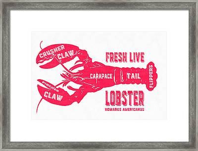 Fresh Live Lobster Vintage Sign Framed Print by Edward Fielding