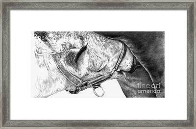 Fresh Milk Framed Print by Sheona Hamilton-Grant