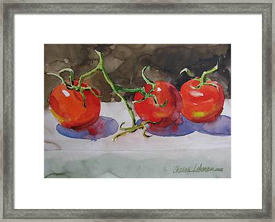 Fresh Picked Framed Print by Sharon Lehman