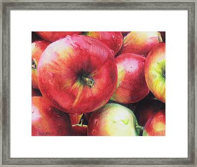 Freshly Picked Framed Print by Shana Rowe Jackson