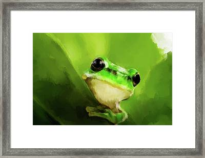 Frog Framed Print by Michael Greenaway