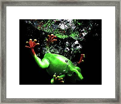 Frog Splash Framed Print by Terril Heilman
