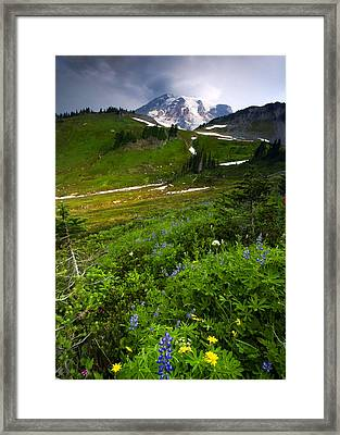 From The Top Framed Print by Mike  Dawson