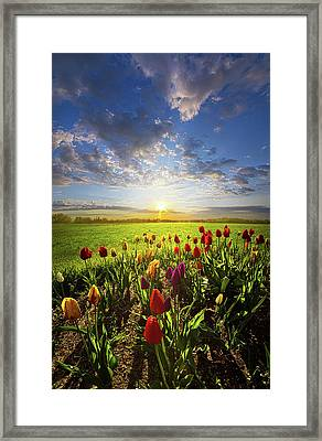 From The Very First Moment Framed Print by Phil Koch