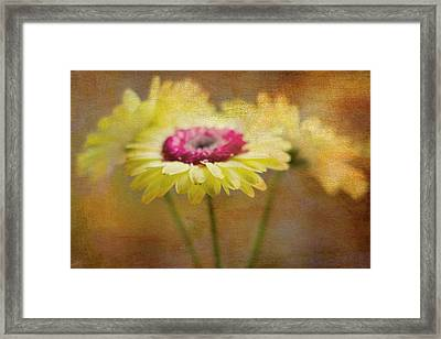 Front And Center Framed Print by Rebecca Cozart