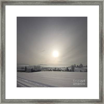 Frosty Midday Framed Print by Angel  Tarantella