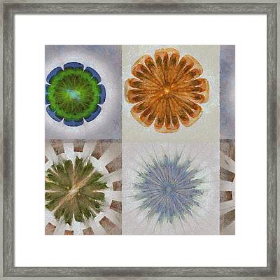 Froufrou Reality Flower  Id 16164-103438-11790 Framed Print by S Lurk