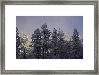 Frozen Framed Print by Ellen Heaverlo