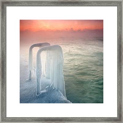 Frozen Framed Print by Evgeni Dinev