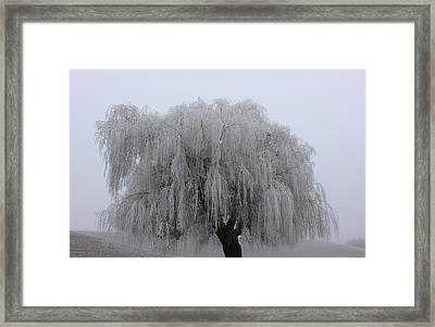 Frozen In Time Framed Print by Linda Meyer