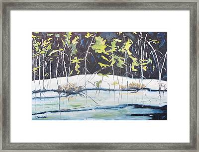 Frozen Marsh Framed Print by Francois Fournier