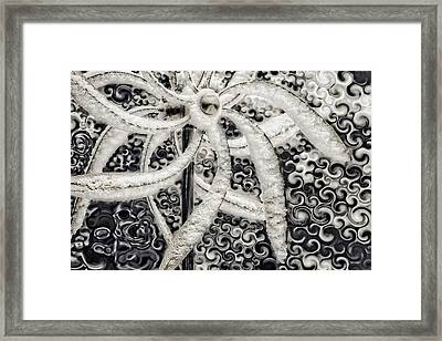 Frozen Motion Framed Print by Becky Titus
