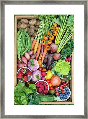 Fruit And Veg Framed Print by Tim Gainey