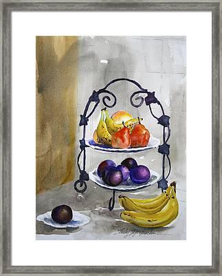 Fruit Tree At The Stuart's Framed Print by Shirley Sykes Bracken