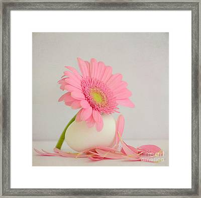 FSL Framed Print by SK Pfphotography