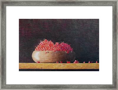 Full Life Framed Print by A  Robert Malcom