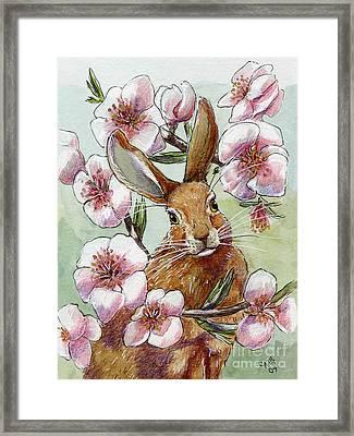 Funny Rabbits - Almond Spring Framed Print by Svetlana Ledneva-Schukina