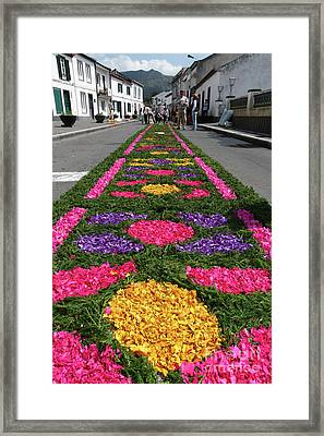 Furnas - Azores Islands Framed Print by Gaspar Avila
