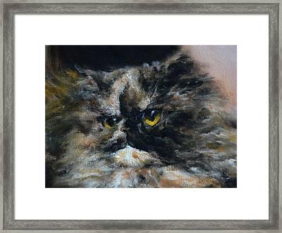 Furry 2 Framed Print by Valeriy Mavlo