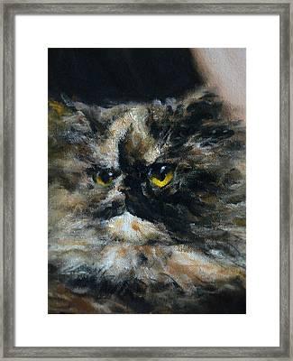 Furry Framed Print by Valeriy Mavlo