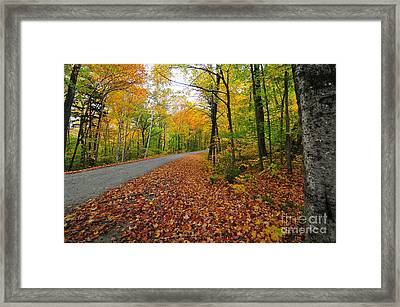 Gale River Loop Framed Print by Catherine Reusch  Daley