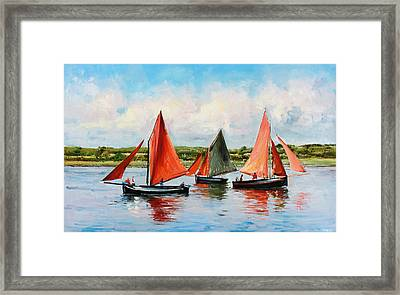 Galway Hookers Framed Print by Conor McGuire