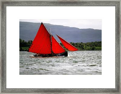 Galway Hookers, Kinvara, Co Galway Framed Print by The Irish Image Collection