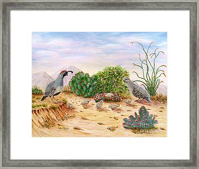 Gambel Quails Day In The Life Framed Print by Judy Filarecki