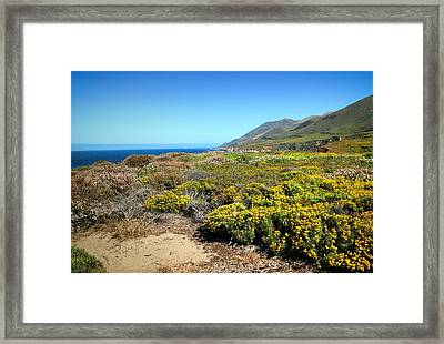 Garapata Beauty Framed Print by Joyce Dickens