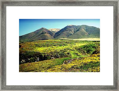 Garapata Hills Andvalleys Framed Print by Joyce Dickens