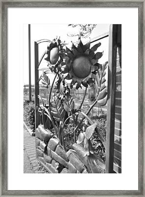 Garden Gates Framed Print by Brynn Ditsche