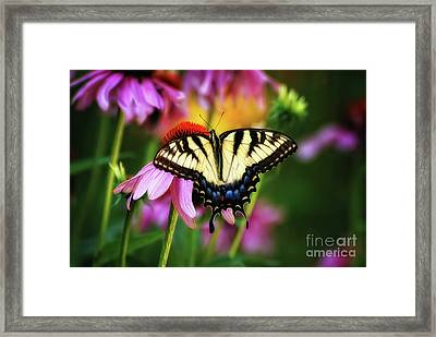 Garden Jewelry Framed Print by Lois Bryan