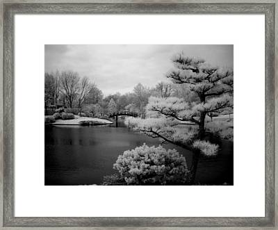 Garden Of Pure Clear Harmony Framed Print by Jane Linders