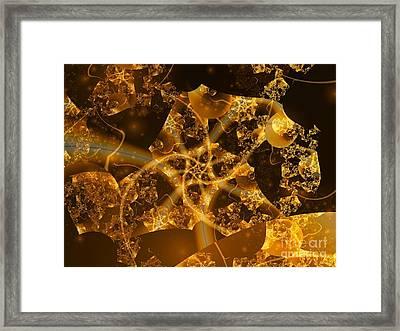 Garden Of The Golden Orbs Framed Print by Ron Bissett