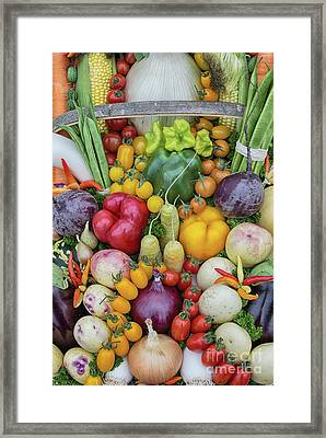 Garden Produce Framed Print by Tim Gainey