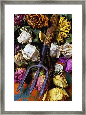 Garden Tool And Old Roses Framed Print by Garry Gay