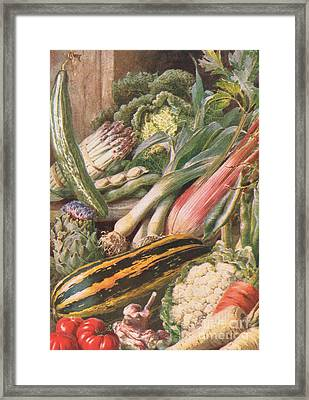 Garden Vegetables Framed Print by Louis Fairfax Muckley