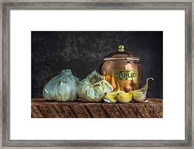 Garlic Framed Print by Paul Freidlund