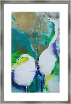 Garza Blanca Framed Print by Steve Fisher