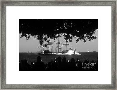 Gasparilla Framed Print by David Lee Thompson